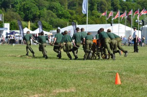 army displays