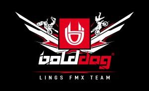 bolddog-lings-fmx-logo-black