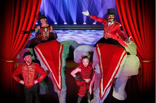 Elephants - Circus